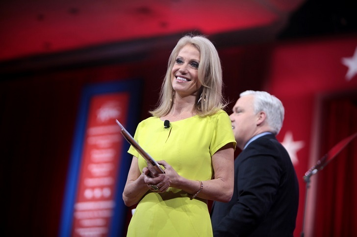 Kellyanne Conway has known Donald Trump for more than a decade and previously workers with Republican law makers.